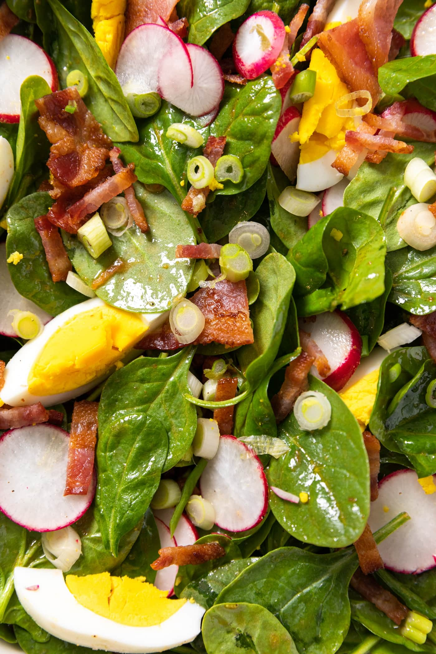 Up close view of salad greens topped with hardboiled eggs, bacon, scallion, and radish
