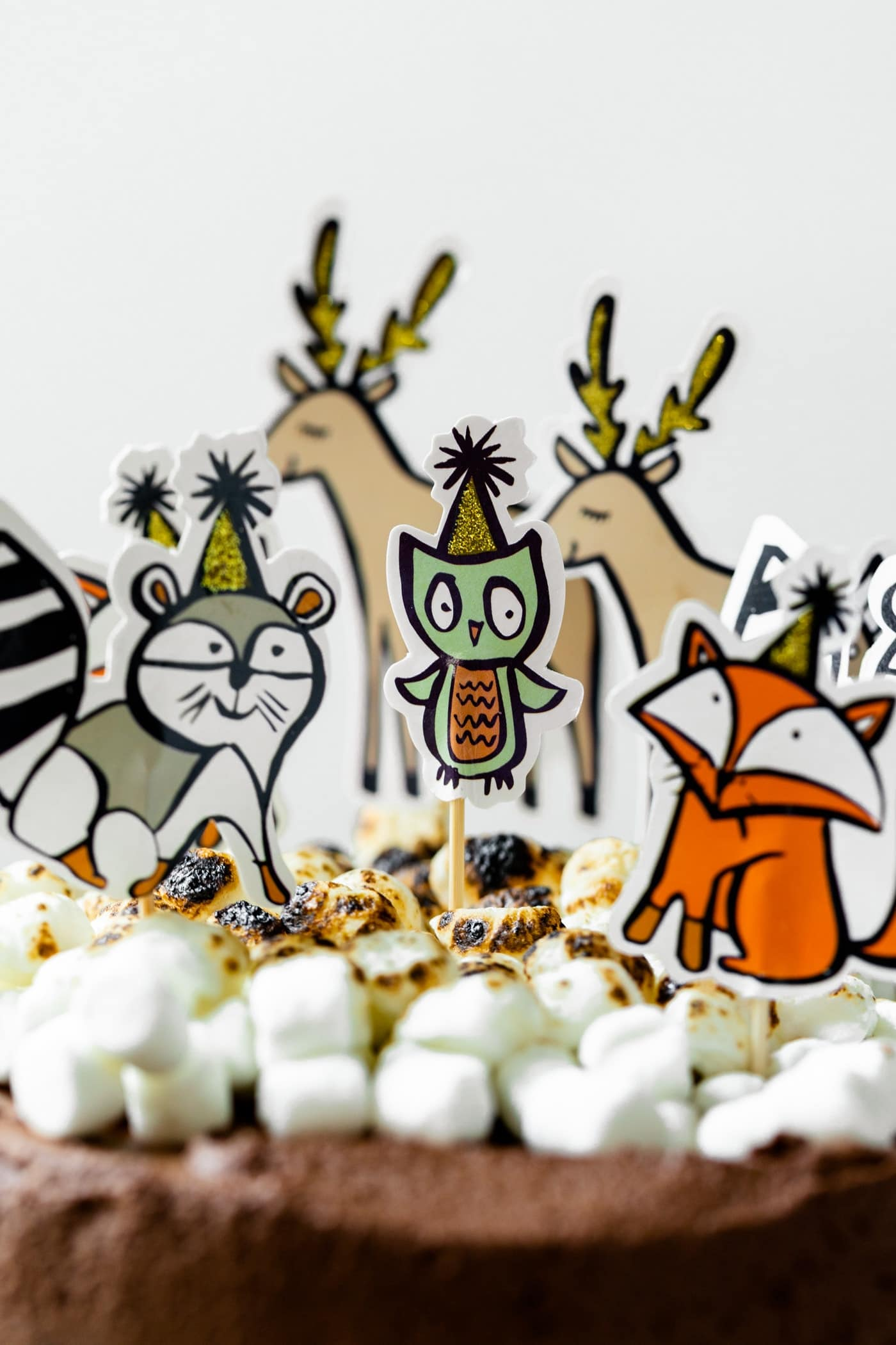 Birthday animal figurines on top of s'mores ice cream cake topped with chocolate frosting and torched marshmallows in front of white background