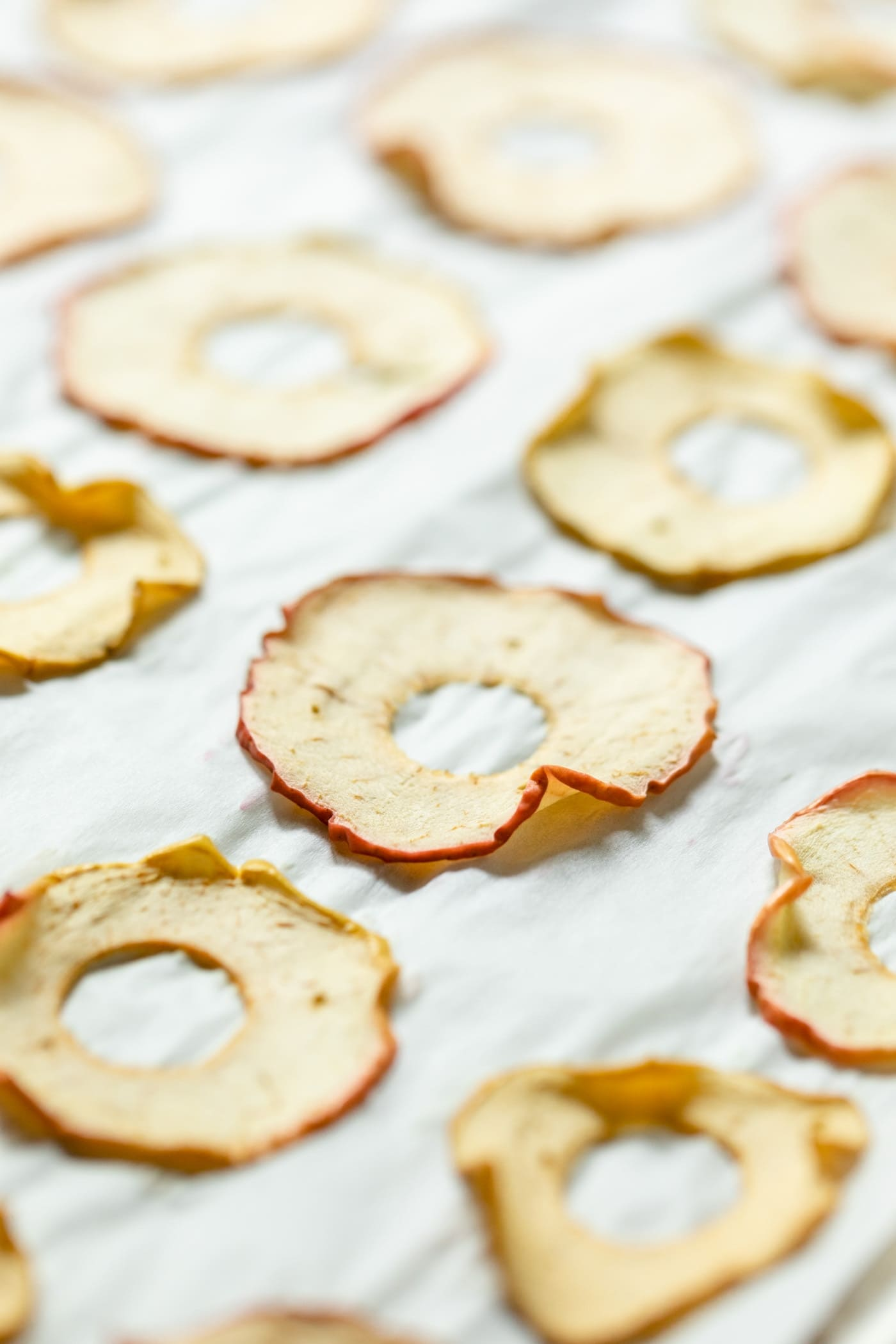Homemade apple chips sitting on parchment with no spices on top