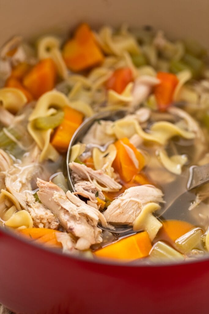 Close up view of pieces of chicken with chunks of carrot and celery surrounding in red bowl
