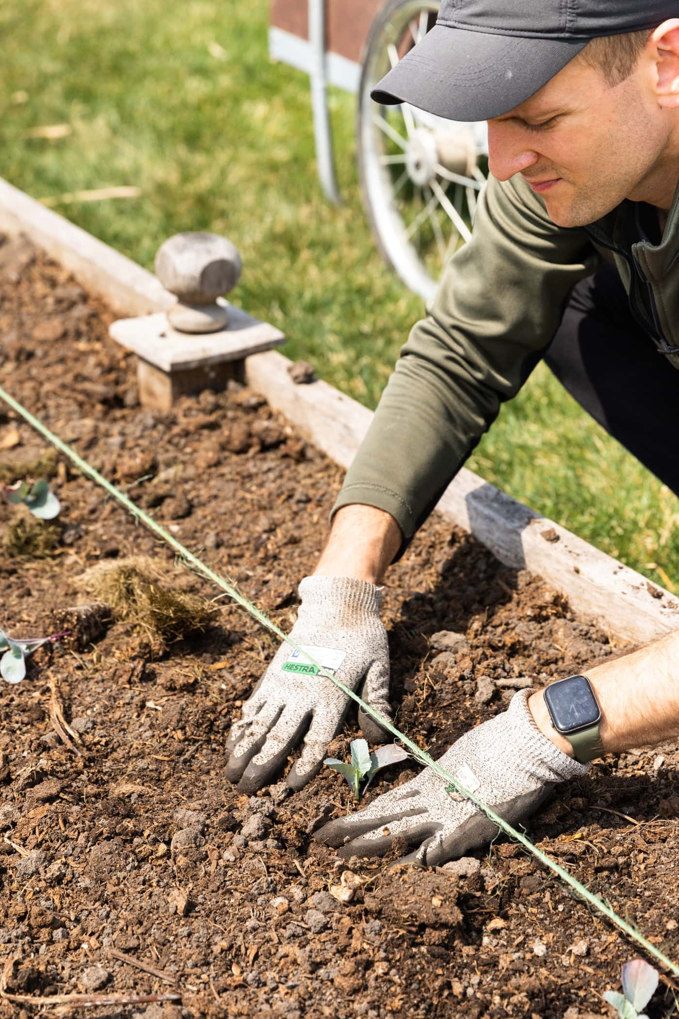 Man planting seed in garden bed with string guiding where to plant small seedling with green grass in background