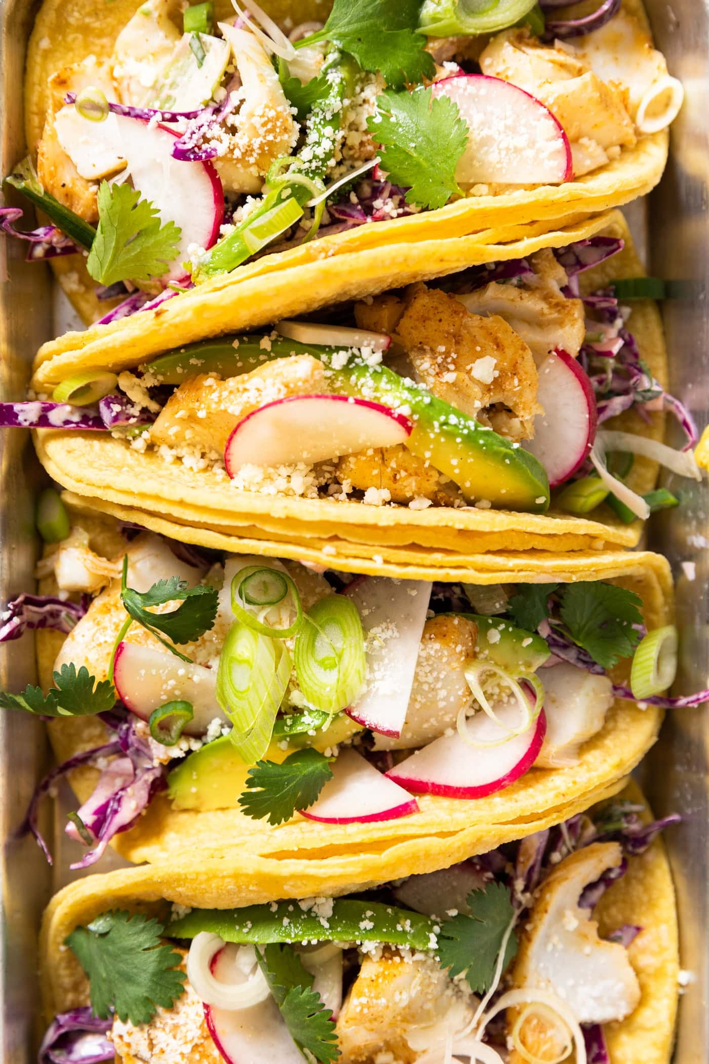 Close up top down view of yellow colored tortillas filled with cod fish and topped with radish and coleslaw