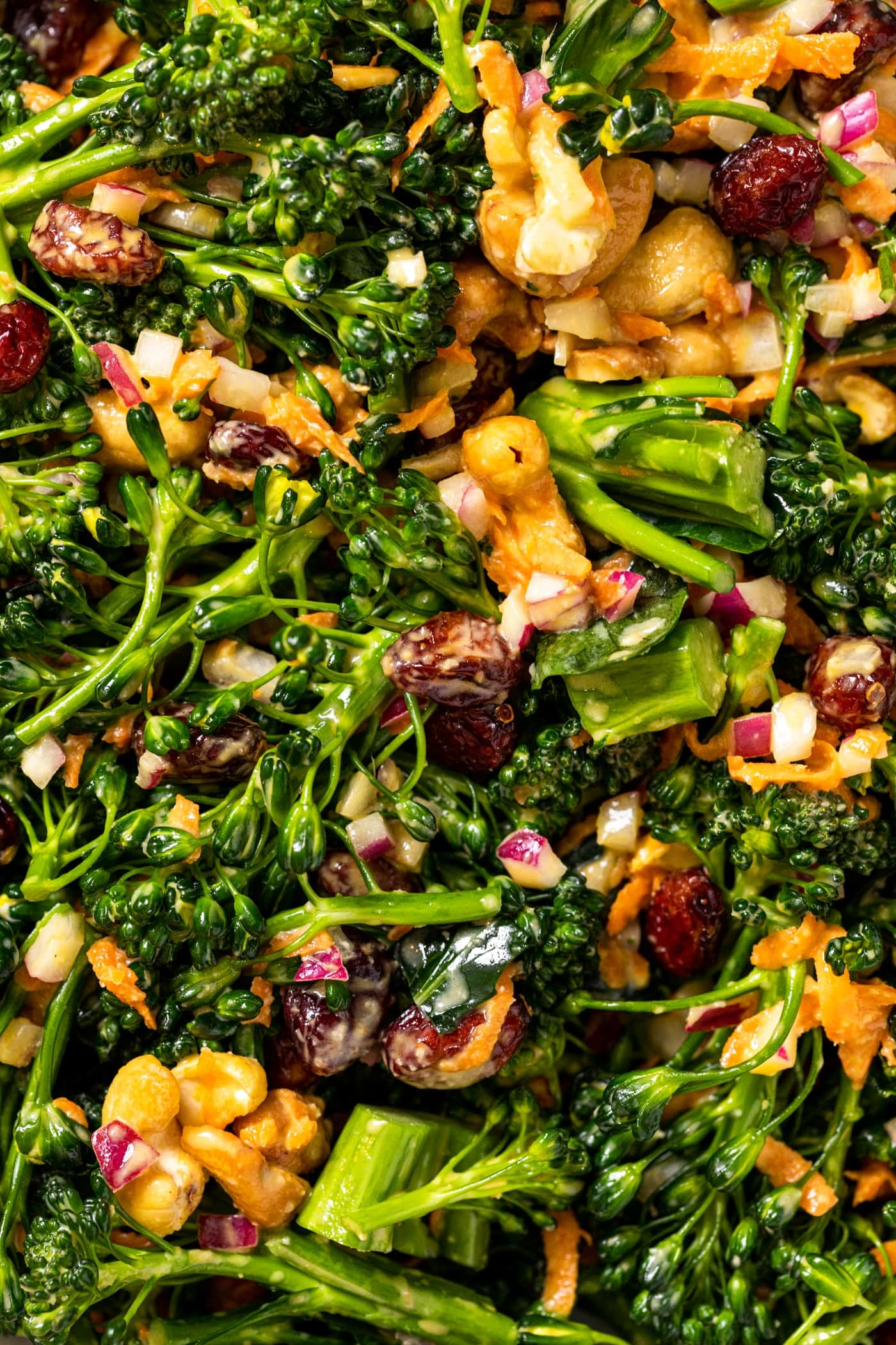 Close up view of broccoli florets with dried cranberries and cashews all mixed with creamy taupe colored ressing
